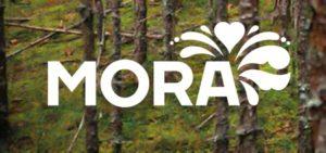 Mora – logotyp vit